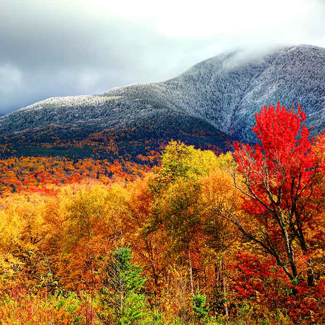 A photograph of the New Hampshire White Mountains during the fall with colored leaves on the trees