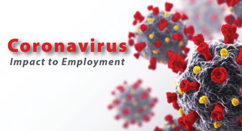Banner graphic for Impact to Employment slider