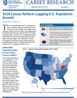 cover of census brief