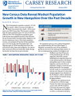 cover of new census data reveal modest population growth in NH brief