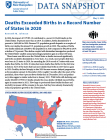 cover of deaths exceeded births snapshot