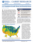 cover of US population and diversity brief