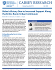 cover of biden victory brief