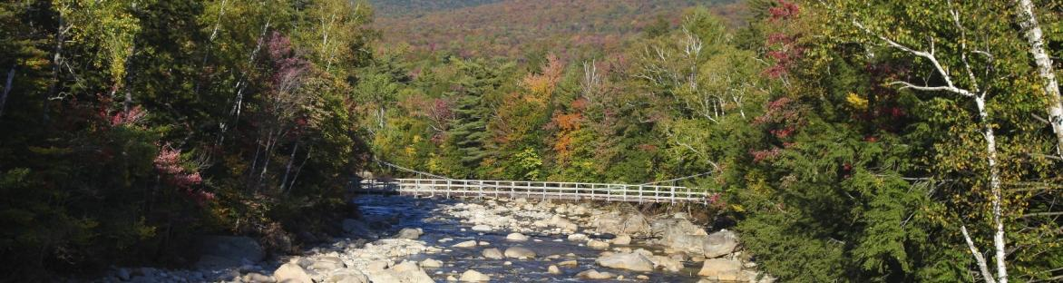 Image of bridge in the NH mountains