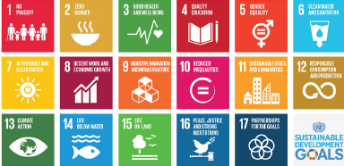 United Nations' Sustainable Development Goals